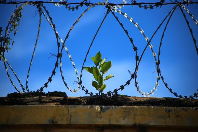 الحرية لكل المناضلين ومعتقلي الرأي والمعتقلين السياسيين في السجون العربية والعالمية الذين يناضلون من أجل الديمقراطية والحرية وفي مقدمتهم: جورج عبدالله وكارلوس.